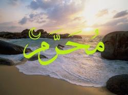muharram_b (250x187, 41Kb)