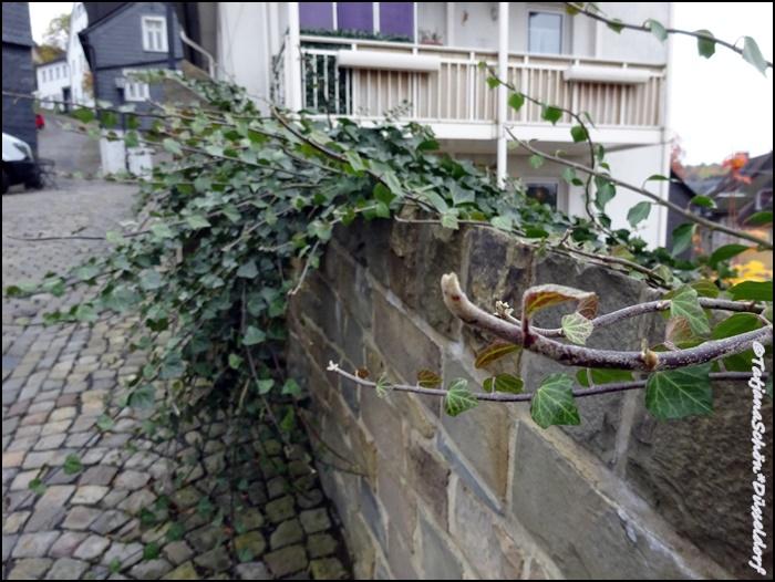 Германия. Зиген /Siegen/ небольшая фото-экскурсия.