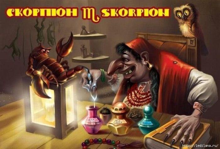 3925311_Znaki_zodiaka_poykrainski_skorpion (700x476, 151Kb)