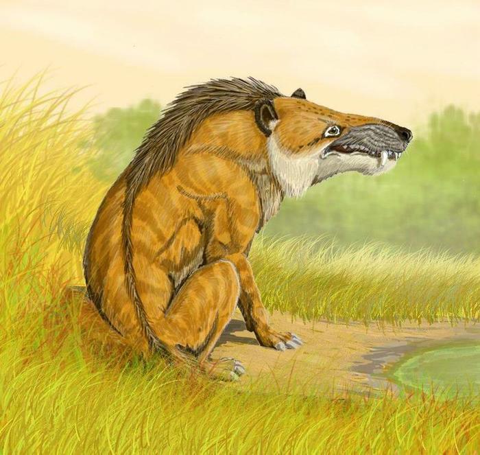 3. Жеводанский зверь (700x663, 460Kb)