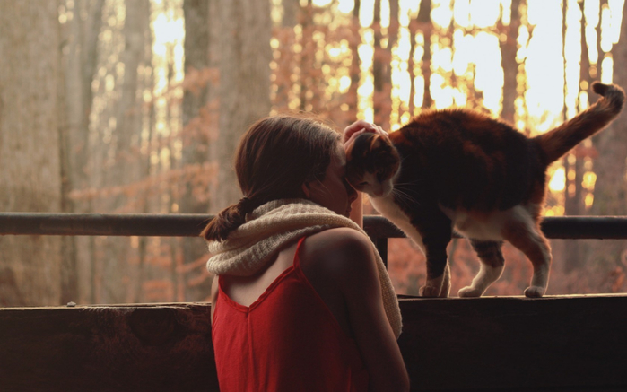 girl-cat-happy-close-mood-love-sunshine-hd-wallpaper-1680x1050 (700x437, 282Kb)
