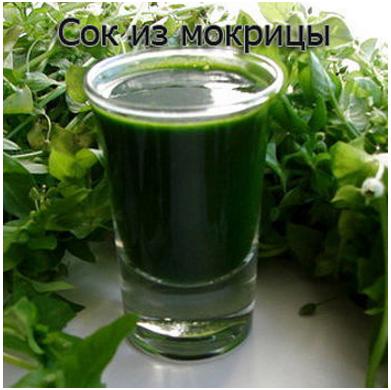 image.pngсок (391x390, 314Kb)