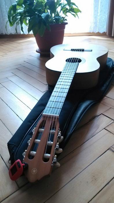 гитара (394x700, 310Kb)