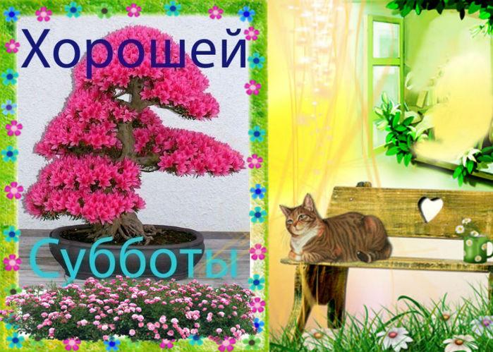 3768849_sybb_ (700x499, 118Kb)