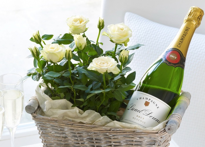 Roses_Champagne_Wicker_375329 (700x504, 116Kb)