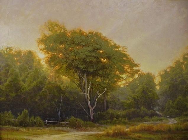 Martin E. Poole Tutt'Art@ (43) (636x476, 267Kb)