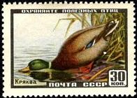 YtSU 1906 ����-������ (196x140, 20Kb)