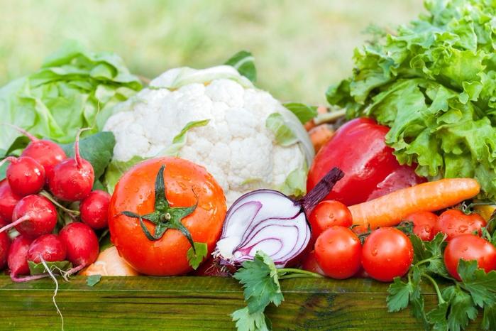 посадка овощей севооборт
