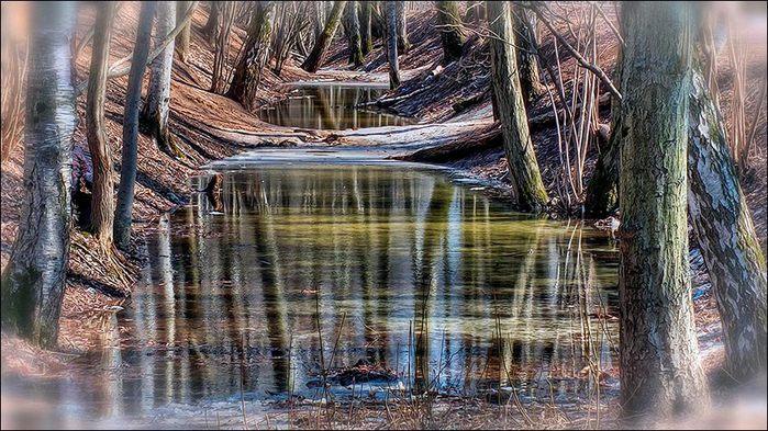 Вешние воды