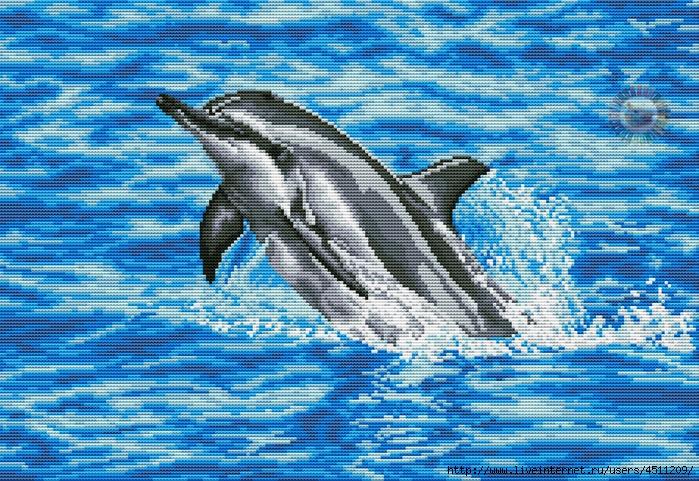 Dolphin (700x481, 437Kb)