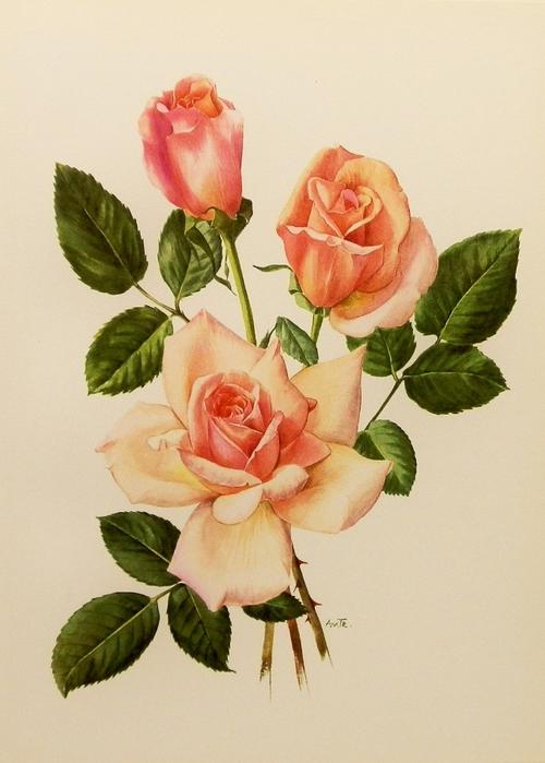 Картинки для декупажа цветы распечатать 5