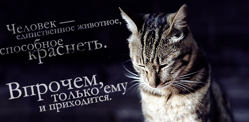 1235987272_hiop.ru_025 (490x240, 46Kb)