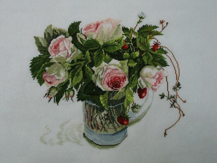 Роза пьер де ронсар купить 3