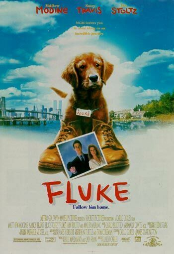 1364586050_Fluke (350x510, 31Kb)