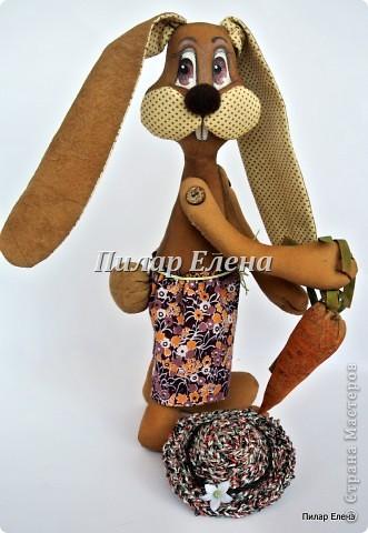 кофейный кролик (4) (331x480, 47Kb)