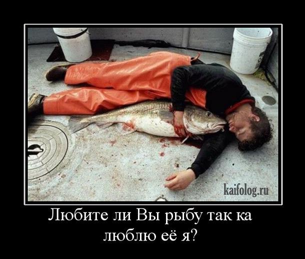 комплекс беременная рыба не хочет умирать дивы