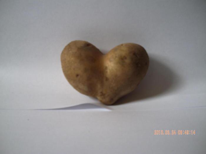 картофелина сердце (700x525, 15Kb)