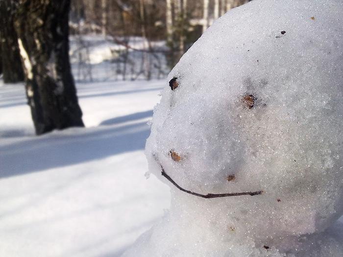 Снеговик/1415502_2 (700x525, 118Kb)