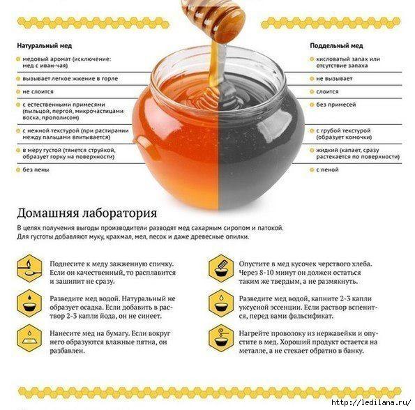 Как отличить натуральный мед от подделки (595x588, 193Kb)