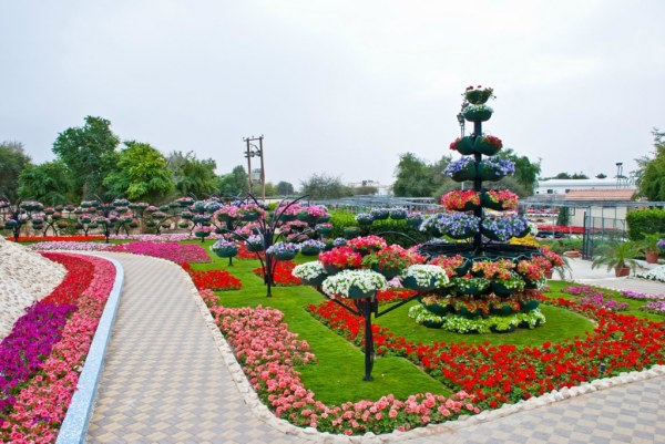 парк цветов  Al Ain Paradise фото (600x401, 76Kb)