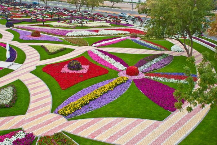 парк цветов  Al Ain Paradise фото 2 (700x469, 122Kb)
