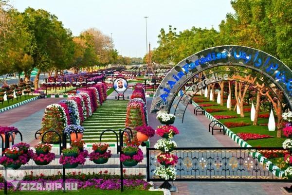 парк цветов  Al Ain Paradise фото 3 (600x401, 113Kb)