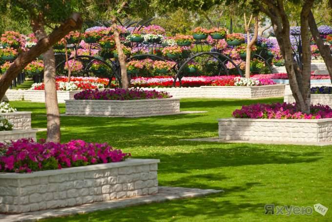 парк цветов  Al Ain Paradise фото 12 (680x455, 66Kb)