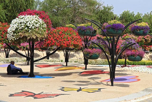 парк цветов  Al Ain Paradise фото 15 (640x427, 329Kb)
