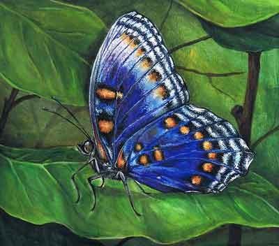 Рисуем бабочку акриловыми красками