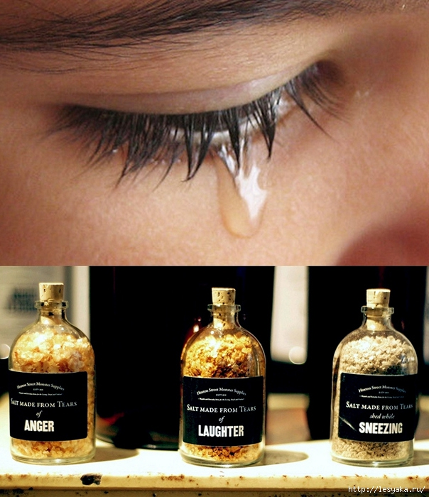 3925073_real_tears_salt_03 (604x700, 274Kb)