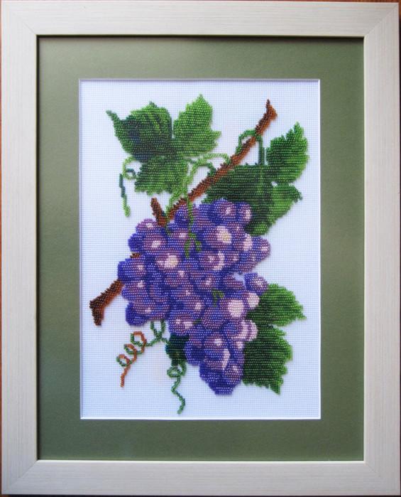 виноград (565x700, 135Kb)