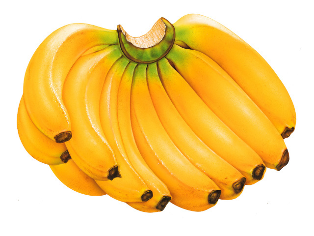 3D-graphics_Bannanas_006923_29 (640x480, 107Kb)