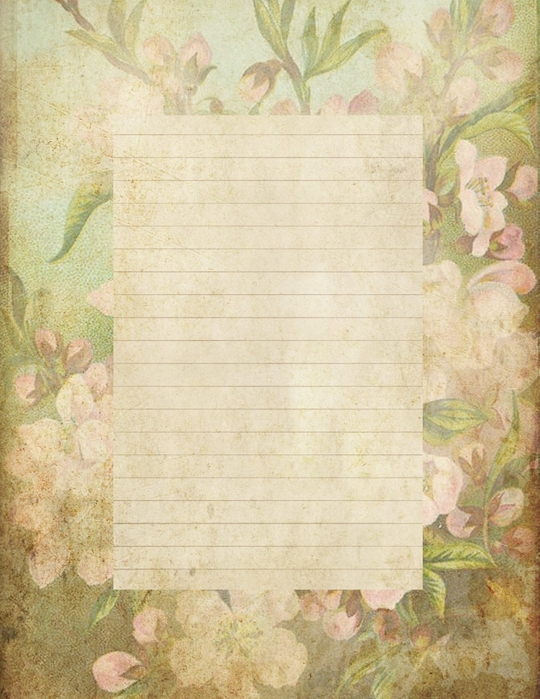 lined page grungy stationary with crabapple blossoms (540x700, 297Kb)