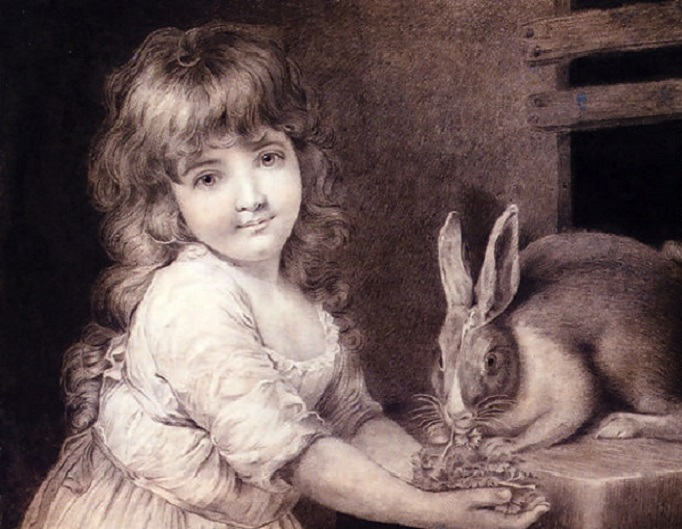 John Russell (1745-1806).The Favourite Rabbit, by (682x529, 129Kb)