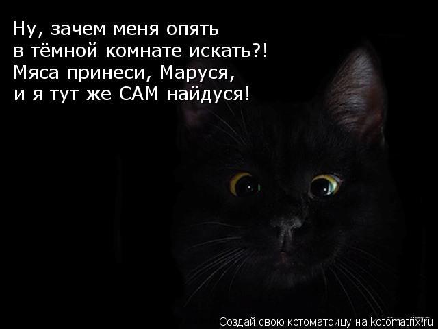 kotomatritsa_Mh (640x480, 28Kb)