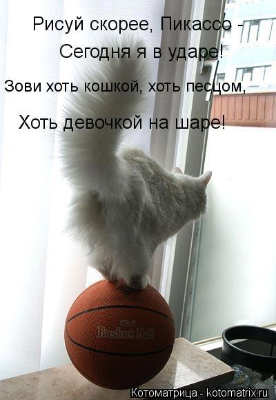 kotomatritsa_sh (400x581, 36Kb)