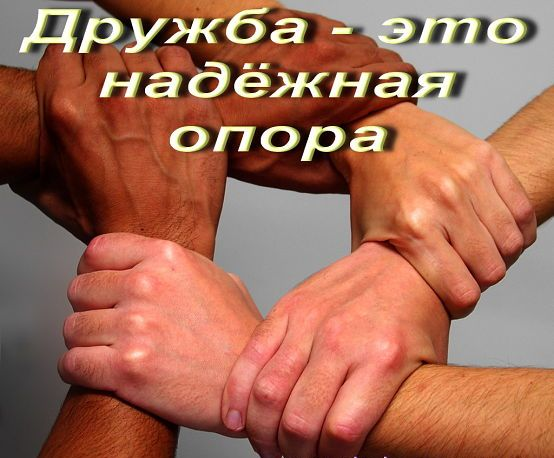 дружба мудрое (554x458, 47Kb)