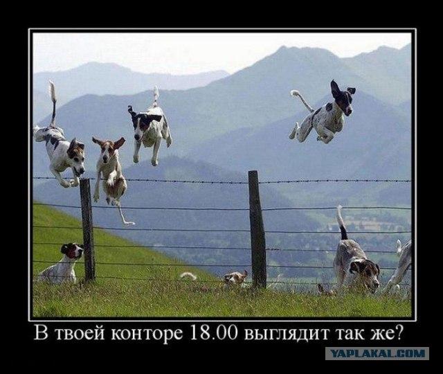 5187415_17Untitled_3 (640x540, 64Kb)