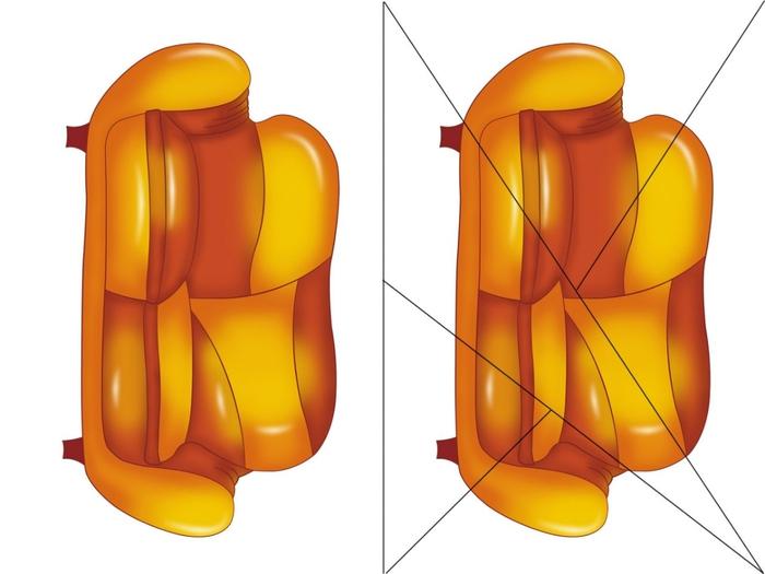 FGNf6esecJ4 (700x525, 137Kb)