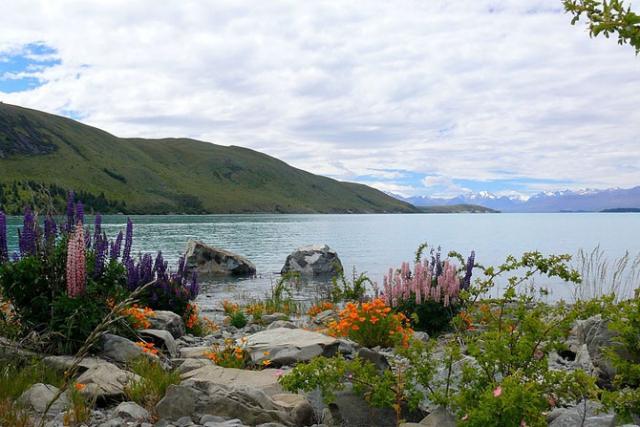 озеро текапо новая зеландия 3 (640x427, 236Kb)