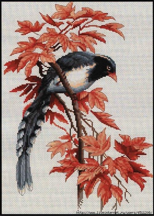 Вышивка крестом птицы ветке
