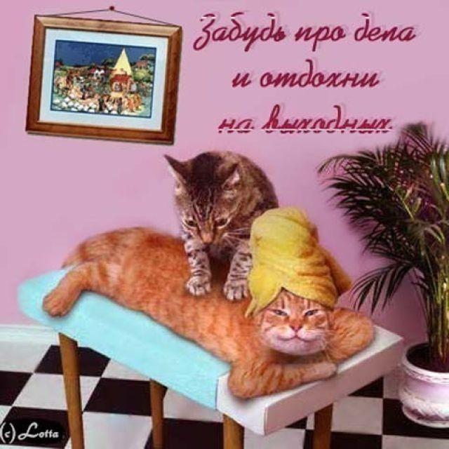 http://img1.liveinternet.ru/images/attach/c/8/99/437/99437657_16376179m.jpg