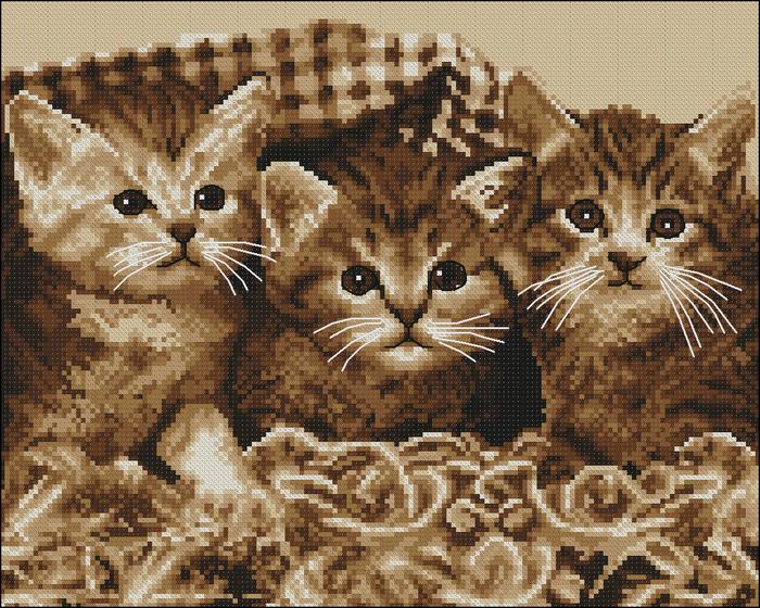 Три котика (схема для вышивки)