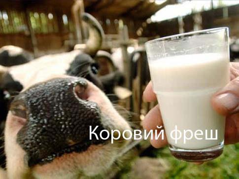 молоко2 (485x363, 28Kb)