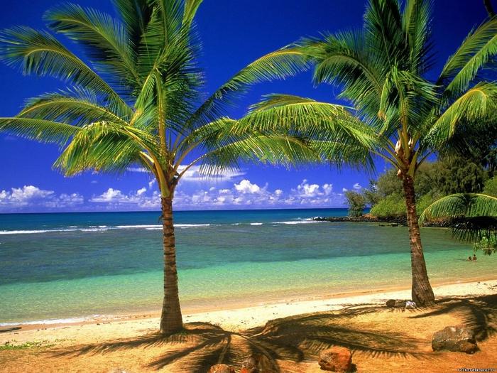 Гавайи-природа (700x525, 361Kb)