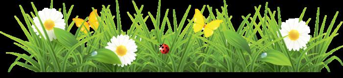 Анимационные картинки для презентации цветы 3