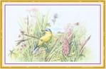Превью Impressions of Nature 2004-21 (700x460, 225Kb)