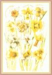 Превью Impressions of Nature 2004-29 (490x700, 232Kb)