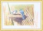 Превью Impressions of Nature 2004-42 (700x507, 240Kb)