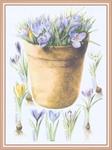 Превью Impressions of Nature 2004-52 (522x700, 252Kb)